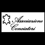 LCOY 2019 - Logo C Partner - Associazione Conciatori