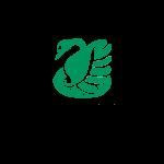 LCOY 2020 - Logo C Partner - Legambiente