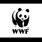LCOY 2020 - Logo Sponsor - WWF